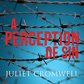A Perception of Sin cover art