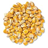 Whole Corn All Natural Made in The USA for Birds, Deer, Turkey, Ducks 50 Pounds