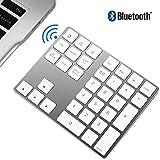 Zienstar-Teclado Numérico Bluetooth,Externo Inalámbrico de 34Teclas con Múltiples Accesos Directos para Computadora Portátil Surface Pro Apple iMac Mackbook iPad Android Tablet Smartphone-Plata