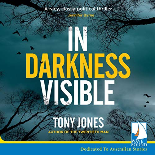 In Darkness Visible Audiobook By Tony Jones cover art