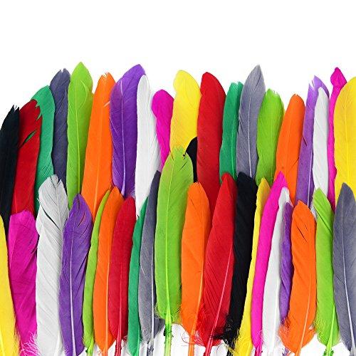 ewtshop 250 plumas naturales, 10 plumas para manualidades y decoración, longitud 10-15 cm