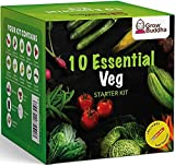 Set de Semillas de Hortalizas - Cultiva Buda Cultiva fácilmente 10 variedades de tus propias hortalizas con nuestro kit de inicio de 10 semillas de hortalizas - Idea de regalo única