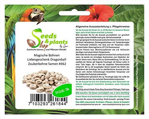 Stk - 9x Magische Bohnen Liebesgeschenk Dragonball Zauberbohne Samen #362 - Seeds Plants Shop Samenbank Pfullingen Patrik Ipsa