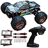 Blomiky 9125 Large Size 1/10 Scale 46KM/H High Speed IPX4 4WD RC Toys Trucks for Kids and Adults 9125 Black Blue