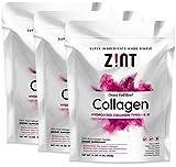 Zint Collagen Peptides Powder (48 oz Bundle, 3 x 16 oz, Best Value): Paleo-Friendly, Keto-Certified, Premium Hydrolyzed Collagen Protein Supplement - Unflavored, Grass Fed, Non GMO