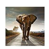 Wfmhra Elephant Wildlife Canvas Art Malerei Poster und