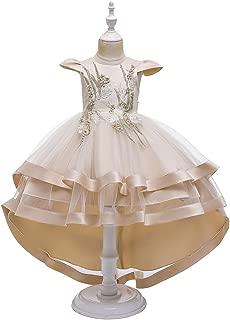 Luxury Princess Dress Children Dress Princess Skirt Big Girls Large Tail Wedding Dress Catwalk Models Flower Girl Dress Costumes Piano Bead Flower Embroidery Tutu ryq (Color : Khaki, Size : 140cm)
