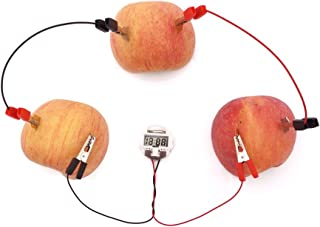 TommoT Fruit Battery-Potato Clock Science Experiment Kit for DIY Home Teaching Toy , School Science Project and Education Subject Toys