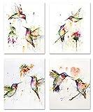 IARTTOP Abstrakt Bilder Vogel | Aquarell Kolibri Poster