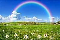 HiYash 5x3ft 春の風景の背景虹草原花花写真背景空雲日光田舎の風景写真スタジオ小道具赤ちゃんの誕生日パーティーの背景ビニール素材