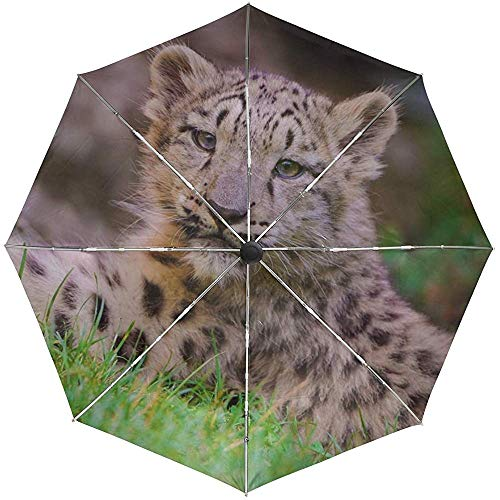 Automatischer Regenschirm Snow Leopard Cub Grass Lie Travel Bequem Winddicht wasserdicht faltbar Auto Open Close