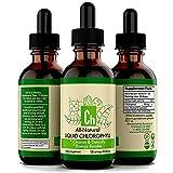 Gotas de clorofila líquida, 2 botellas de sabor a menta 60 ml 100% natural concentrado suplemento energético clorofila gotas líquidas, refuerzo energético para la salud sistema inmunológico apoya