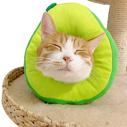MayuMay verstellbares Halsbänder, süßer Halskegel nach der Operation, wundheilender Schutzkegel zur Genesung elisabethanischer Halsbänder, weiche Kante für Kätzchen und Katzen (1er-Pack) (Avocado)
