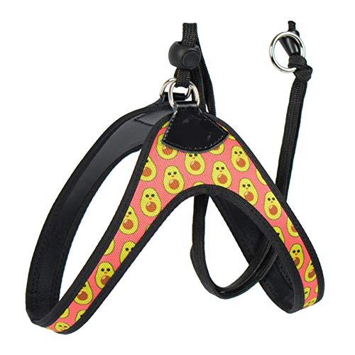Cinturón de seguridad para perro fácil y cómodo estampado flamenco pequeño cinturón de seguridad para mascotas Chihuahua Shih Tzu Bull Terrier 1.0