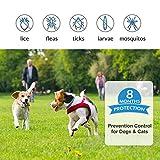 IMG-1 segminismart collare antipulci cane per