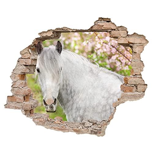 Little Deco 3D Wandsticker Wandaufkleber Wandtattoo Kinderzimmer Mädchen Pferd Wanddeko Spielzimmer Wandbild Poster Tapete Schlafzimmer Kleinkind Horse DL639-3