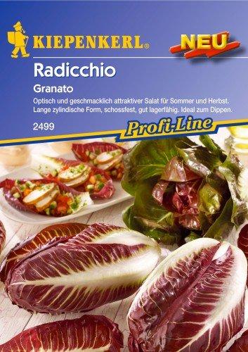 "Radicchio Salat, ""Granato"""