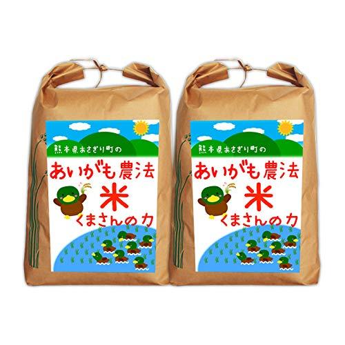 【送料無料】令和2年産 合鴨農法米くまさんの力 玄米:10kg(5kg×2袋)【栽培期間中農薬不使用】【アイガモ】【熊本県産】