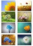 48 Grußkarten Blumen Klappkarten...