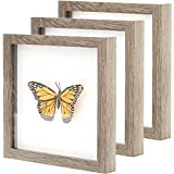 Super-Sturdy, Real Wood 8x10 Shadow Box Frame 3pk. Genuine Hardwood Displays with Real Glass. Best Shadowbox to Showcase Photos, Tickets, Wedding Bouquets, CDs, Medals, Awards, Seashells and Insects.
