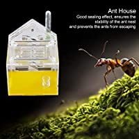 Ant 、Ant House、Pet Mania House、Educational Insect Villa、子供向け学習子供用