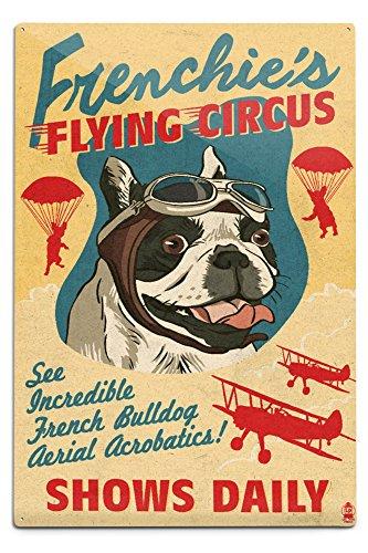 Lantern Press French Bulldog, Retro Flying Circus Ad 56344 (6x9 Aluminum Wall Sign, Wall Decor Ready to Hang)