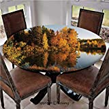 "Elastic Edged Polyester Fitted Table Cover,Lake in Sunset Rays Autumn Landscape Pond Woodland Outdoors Ecology Environment Decorative,Fits up 40""-44"" Diameter Tables,The Ultimate Protection for Your T"