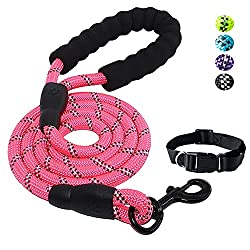 🐶 STRONG AND DURABLE - Our dog leash is Made of 1/2 inch diameter nylon climbing rope, A unique high density anti-bite layer design inside, The strength is nearly 2x that of the same type of rope! Weight only 0.5 pounds, light and sturdy enough for s...