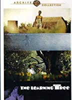 Learning Tree [DVD] [Import]