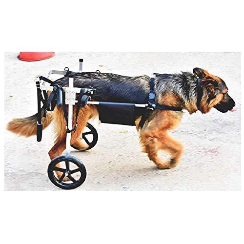 Rollstuhl für Hunde, Rollstuhl, für mittelgroße Hunde 15 – 60 kg – Veterinar – zugelassen für Hinterbeine Rehabilitation bei Handicapen Hunden, x-large