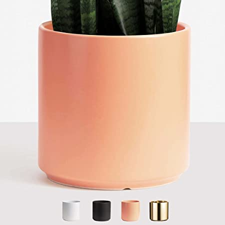 Matte White Peach /& Pebble 10 inch Modern Ceramic Planter