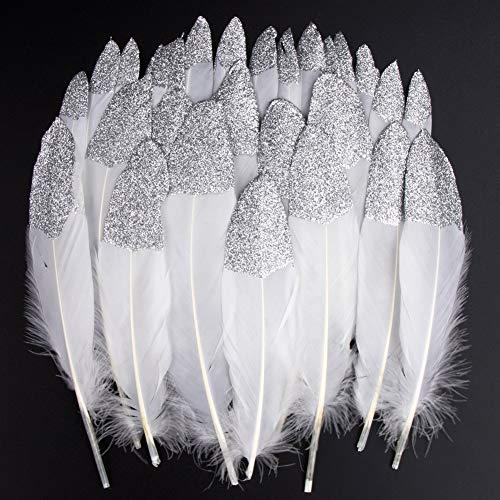 Vidillo Bunte Federn, 40 Stück Silber getauchtes natürliches Weiß Gänsefedern, ideal als Dekoration zum Karnival für Halloween Fest Masken, Kostüme und Basteln für Kinder(Silber)