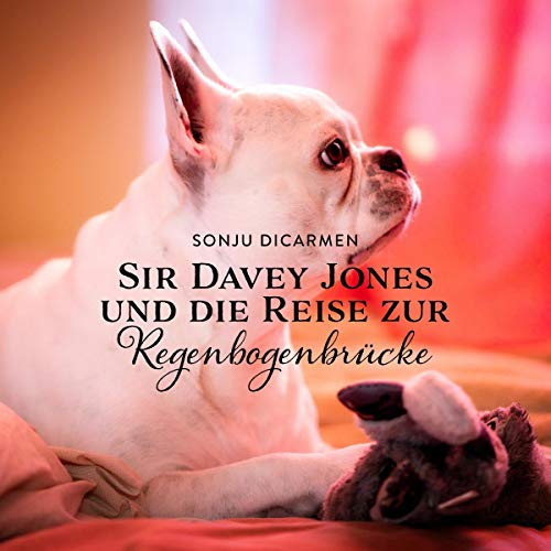 Sir Davey Jones und die Reise zur Regenbogenbrücke Titelbild