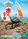 【DVD付】水の生き物  学研の図鑑LIVE  3歳~小学生向け 図鑑