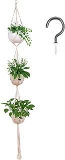 vertical hanging plant holder