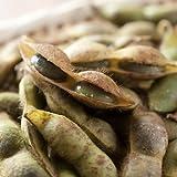 丹波篠山産 黒大豆枝豆(丹波篠山市認定販売所たぶち農場) さやのみ1kg
