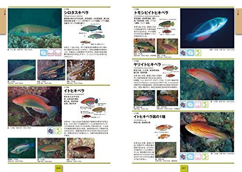 改訂新版海水魚ひと目で特徴がわかる図解付き(ネイチャーウォッチングガイドブック)