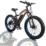"ECOTRIC 26""Powerful Fat Tire Electric Bicycle Mountain Bike 500W Motor 36V/13AH Removable Lithium Battery Ebike Beach Snow Shock Absorption (Blue)"