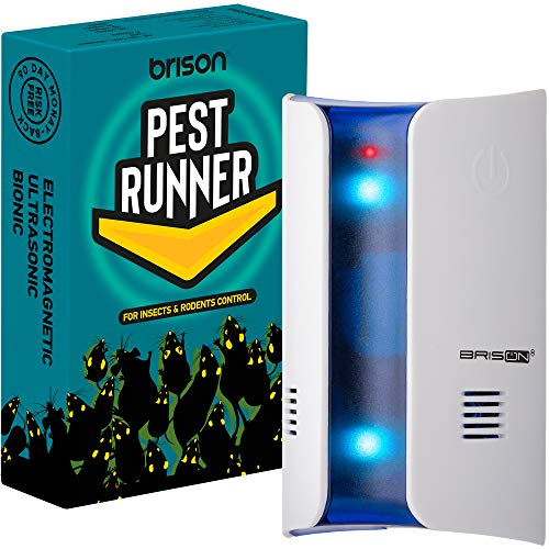 BRISON Ultrasonic Pest Repellent Plug in – Mice Rats Spider Control - for Repelling Rodents & Insects Out of Indoors, Non-Toxic Electronic Repel