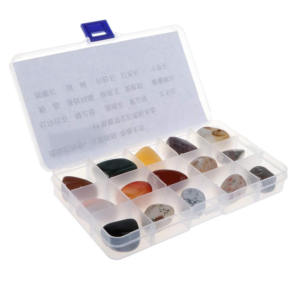 Injoyo Kit Educativo De Ciencias De La Geología - Colección De Rocas Y Minerales (15 Piezas) con Caja: Amazon.es: Hogar