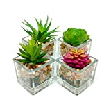 Small Glass Cube Artificial Succulent Planters | 4 Set | Assorted Faux Plants with Smooth Rocks
