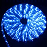 Tiras de LED 8Modelo Tira de luz de neón LED a prueba de agua AC 220V Tubo de arco iris flexible Luces de cuerda LED Alambre de remolque redondo Decorativo para exteriores RGB