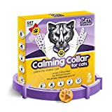 "Zen Panther Calming Collar for Cats – Pheromone Cat Calm Collar - Anxiety Relief Lavender Scent - Reduces Stress – Adjustable 15"" Relaxing Collar for Kitten – Stop Aggression and Anxious Behavior"