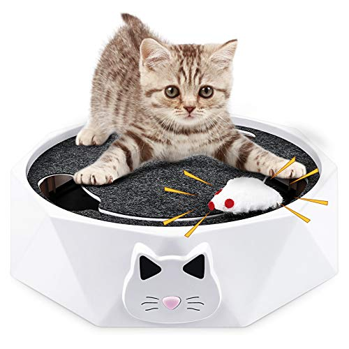 G.C Interaktives Katzenspielzeug elektrische Maus für Katzen Catch me Katzen Spielzeug Intelligenzspielzeug mit Mausgeräusch für Katzen Spiele