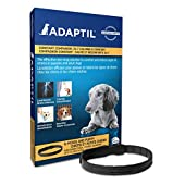 ADAPTIL Collar for Small Dogs – Calms & Comforts Dogs During Training, Boarding, Loud Noises and Fears Outdoors - Dog Appeasing Pheromone Collar - (Small Dog Calming Collar, 1-Pack)