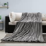 Electric Blanket Heated Twin Size 62' x 84' Large Heating Throw with 4 Heating Levels & Timer 10 Hours Auto Off, Warm Comfort Blanket for Bed Sofa Home Office Use, Machine Washable