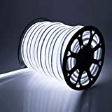 DELight Flexible 150ft White LED Neon Rope Light 3600pcs bulbs Christmas Decor Holiday Party Decoration Lighting