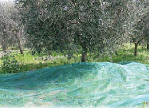Rete per olive a teli Mt. 6x6 - con apertura