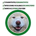 DISANE Nettoyant pour les Yeux des Chiens Naturel   Élimine les Taches, Croûtes et les Sécrétions Lacrymales Autour de l'œil   Formulé sous contrôle vétérinaire pour la santé oculaire du chien #3