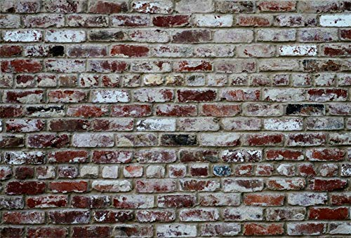 Fondos de Pared Pared de ladrillo Antiguo Cemento Fiesta Bebé Niño Patrón Retrato Fondo fotográfico Estudio fotográfico A63x3m